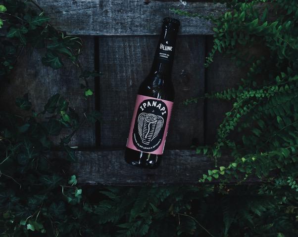 photo-bière-ipanapi-ipa