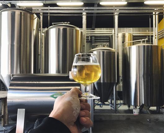 main-tenant-verre-bière
