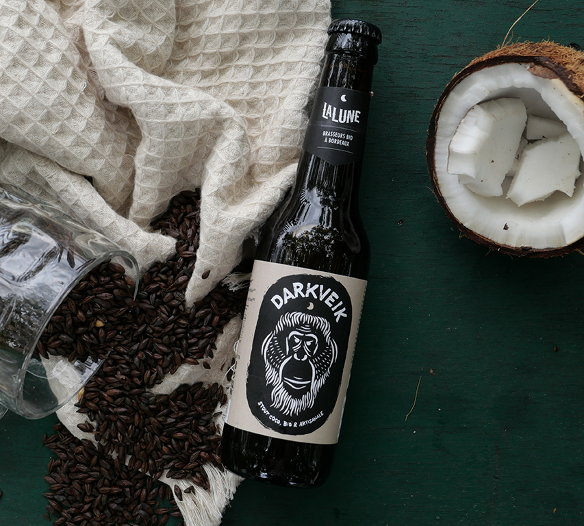 Bière-Darkveik-Stout-Coco