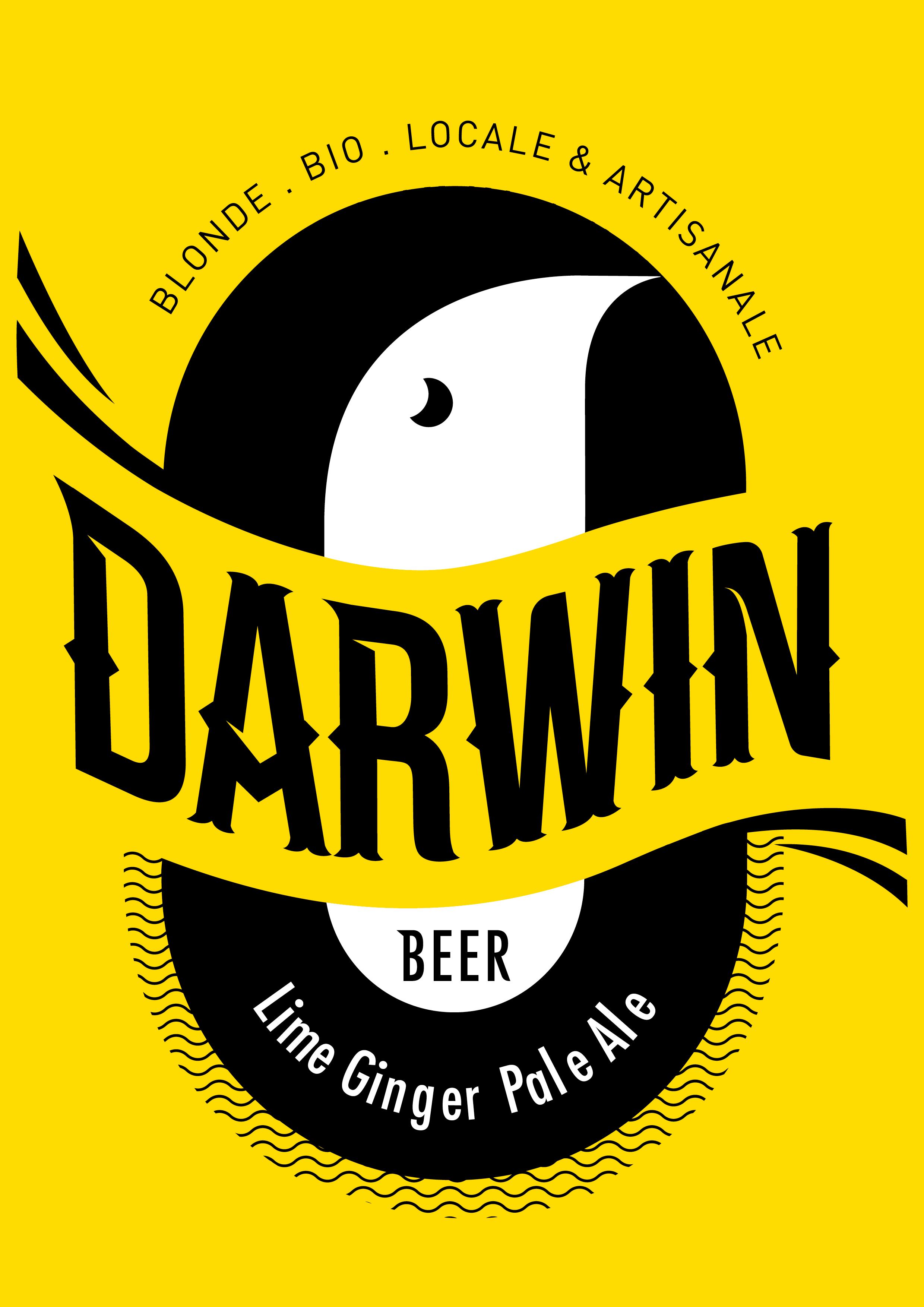 darwin beer